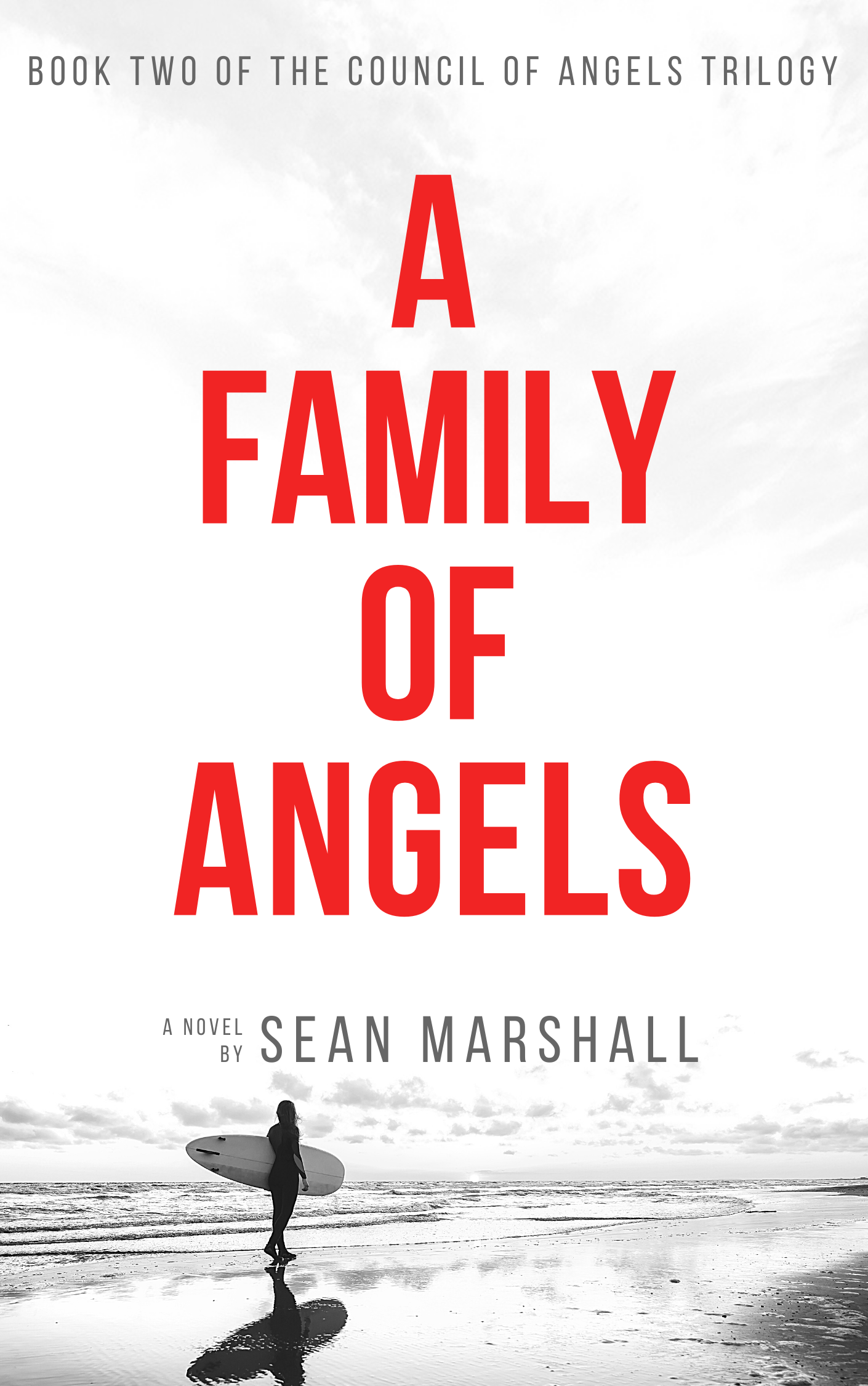 A Family of Angels by Sean Marshall