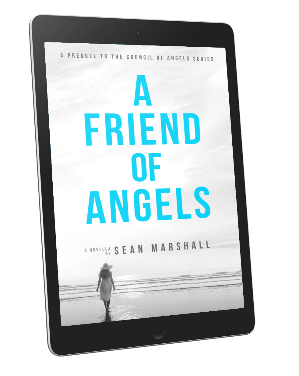 A Friend of Angels by Sean Marshall